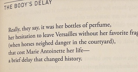 Always giddy to find perfumes in poems, this one by Luljeta Llelshanaku.