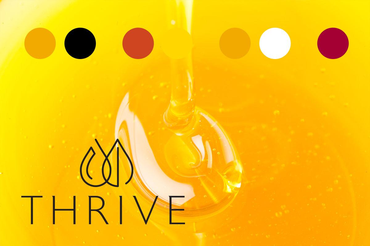 Thrive_Portfolio_Colors.jpg