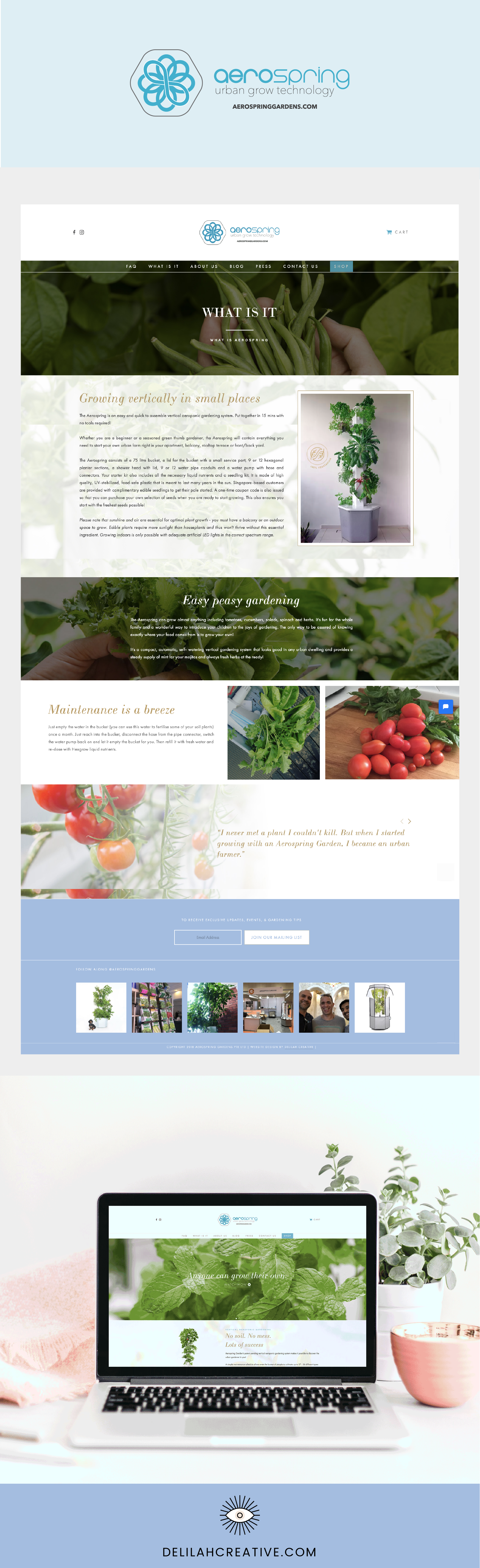 Aerospring-garden-ecommerce-website-design-singapore-delilah-creative