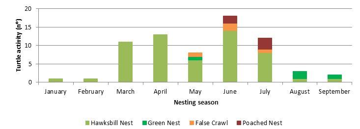 Figure       SEQ Figure \* ARABIC     1      . Temporal distribution of Hawksbill turtle and Green turtle 2017 nesting season.