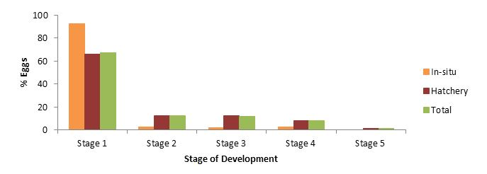 Figure       SEQ Figure \* ARABIC     4      . Stage of development of the unhatched eggs from the hatchery and in-situ nests.