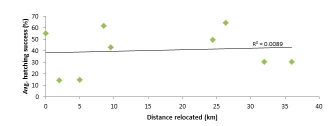 Figure       SEQ Figure \* ARABIC     6      . Correlation between the average hatching success (%) and the distance travelled to Pulau Tengah. R² represents the coefficient of determination and ranges from 0 to 1. In-situ clutches were excluded from this analysis.