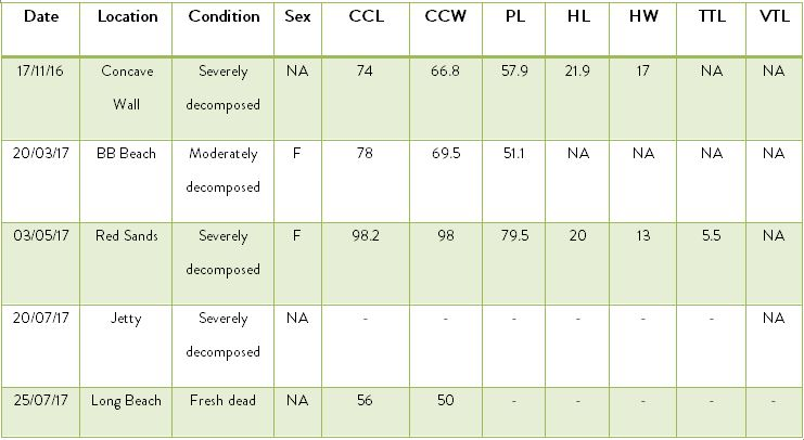 Table       SEQ Table \* ARABIC     4      . Biometric data of stranded sea turtles (cm): CCL (curved carapace length); CCW (curved carapace width); PL (plastron length); HL (head length); HW (head width); TTL (total tail length); VTL (vent-tip length).