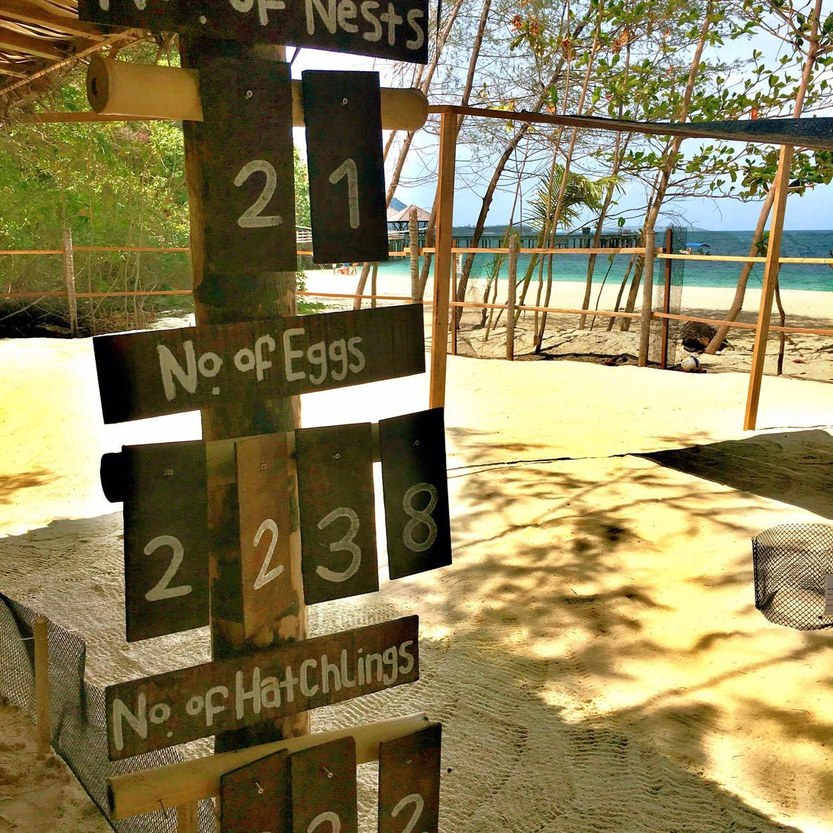"Within the resort, Turtle Watch Camp was established in 2014 to preserve, research and monitor the local population of endangered sea turtles. The organisation has now been renamed ""Tengah Island Conservation""."
