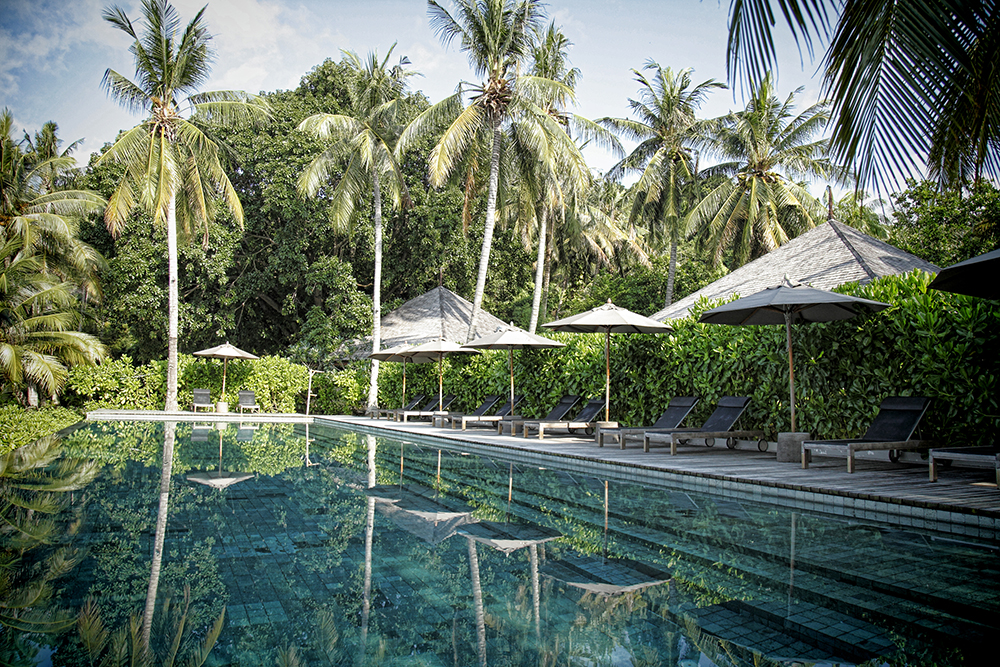The resort - pool.JPG