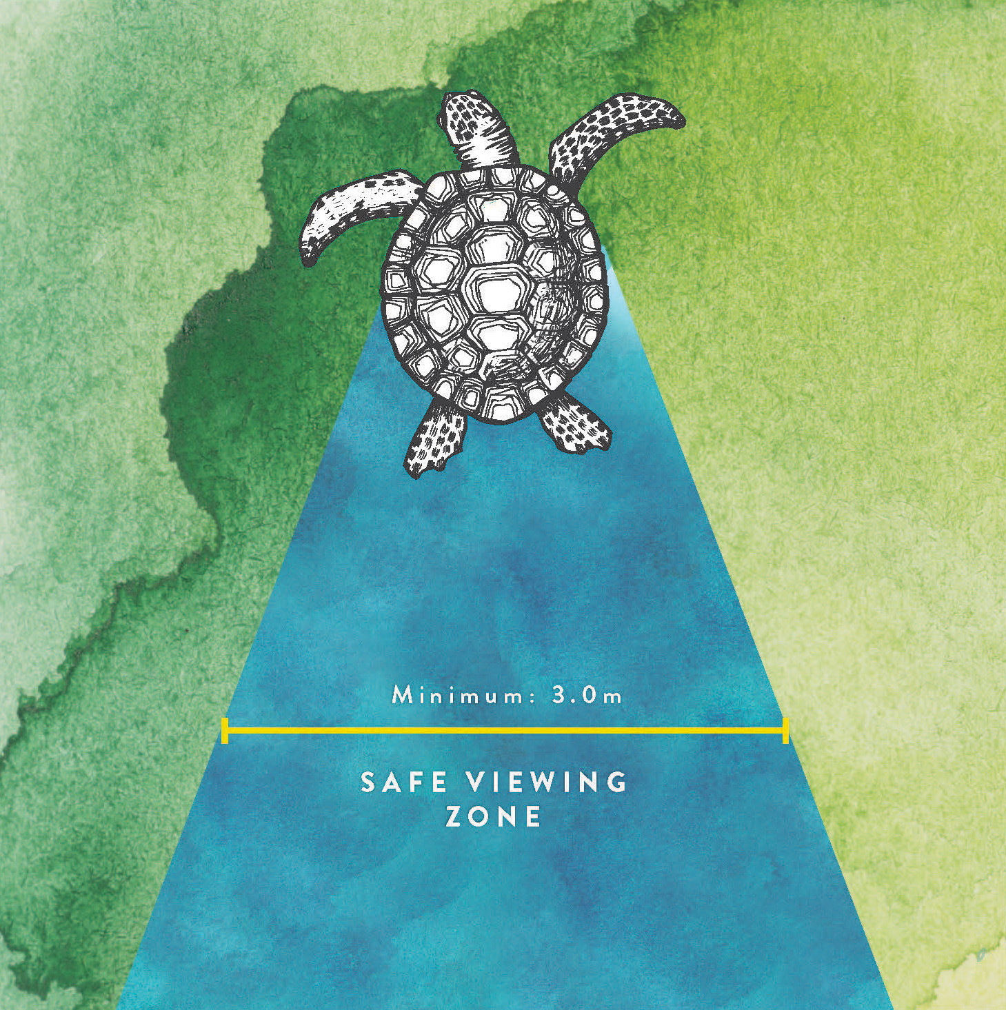 conservation best practice - turtle viewing zone.jpg