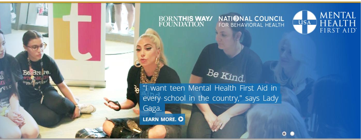 https://www.mentalhealthfirstaid.org/