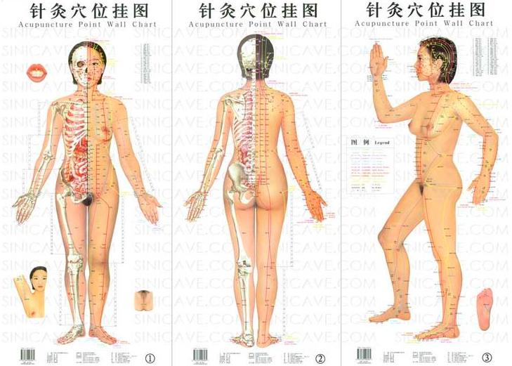 Acupuncture points  Source