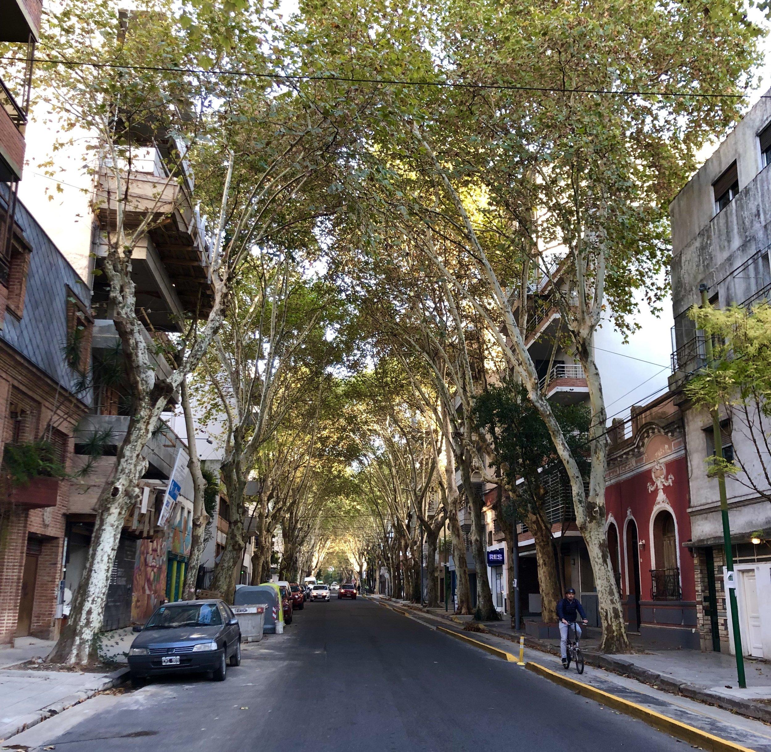 Palermo-hollywood.jpg