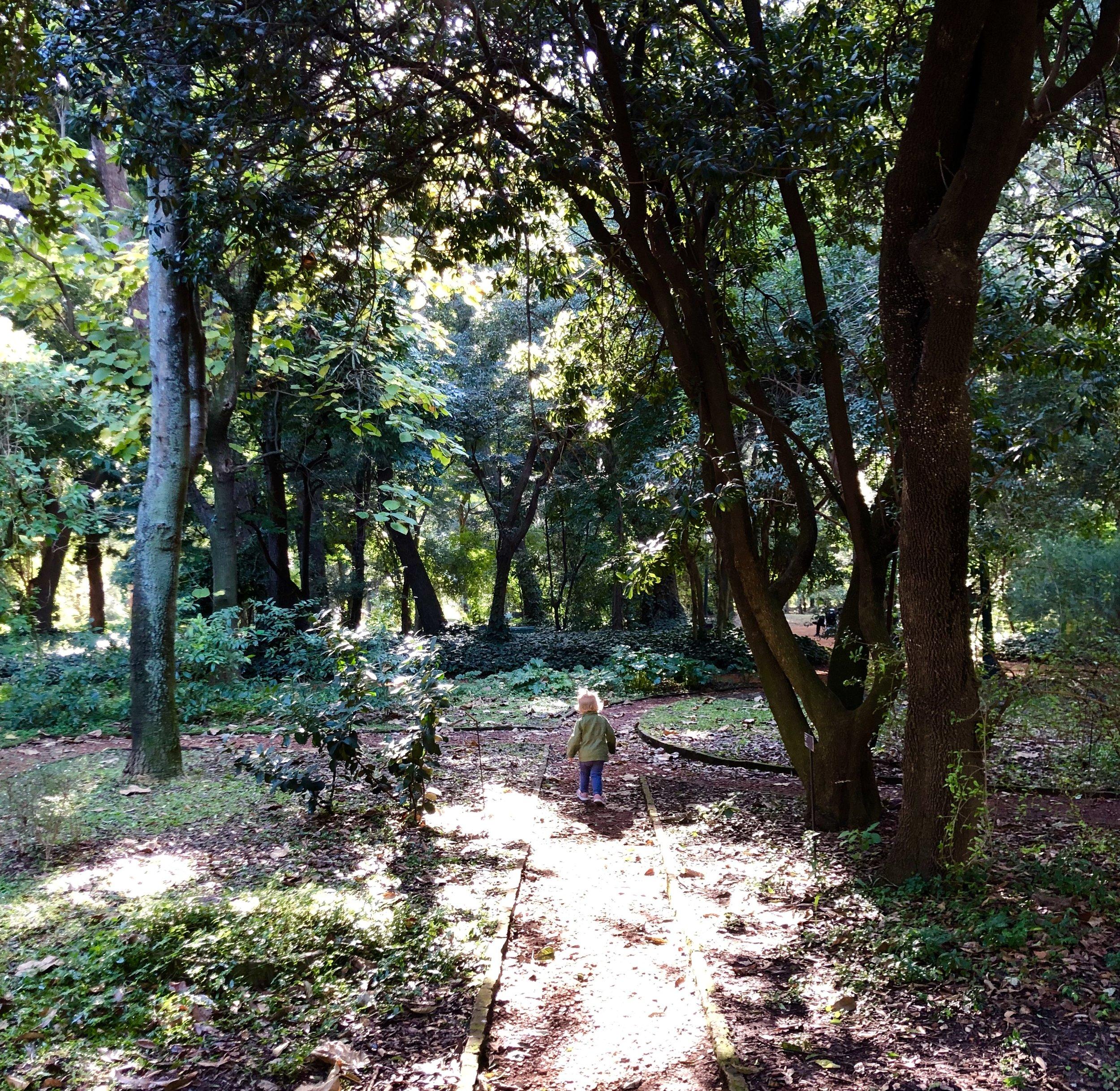 Jardín Botánico Carlos Thays.jpg