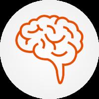 neuroexam