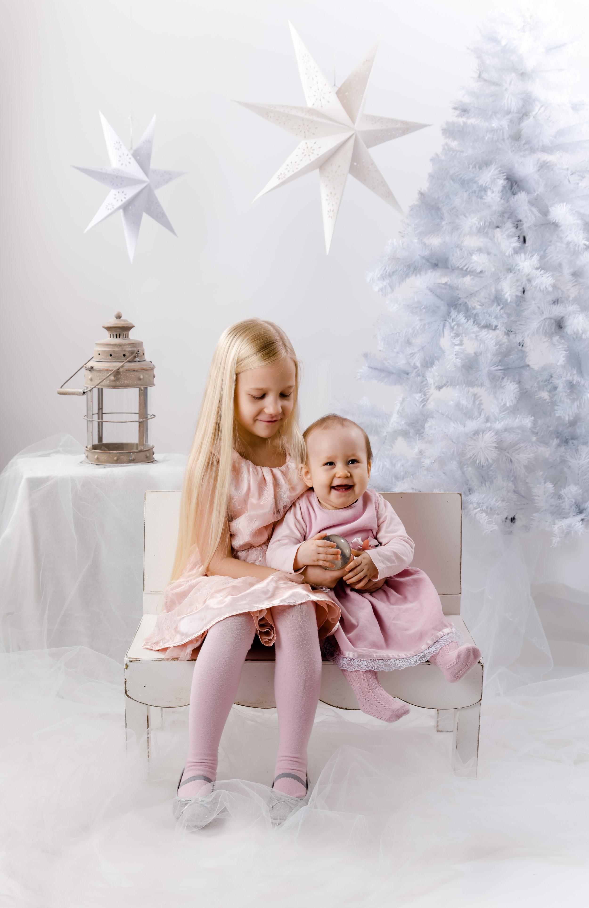 joulukortti_Jaslin&Seidi-1355.jpg