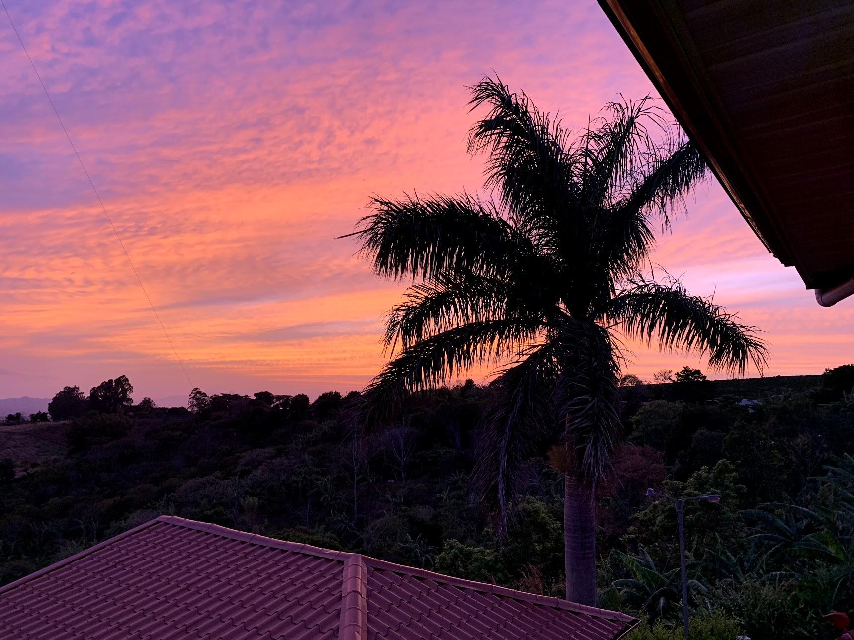 Ferg's trip to Costa Rica