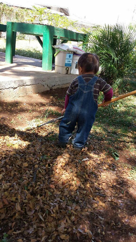 Community Garden Workday Keiki Roots KKV