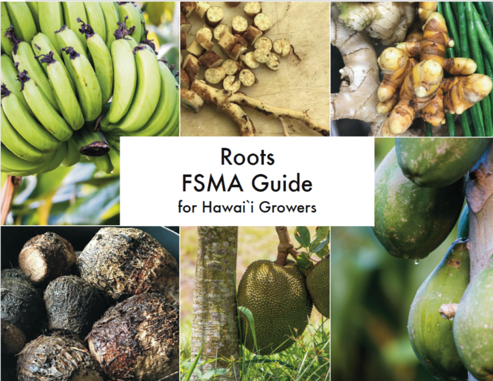 FSMA Guide Cover.png