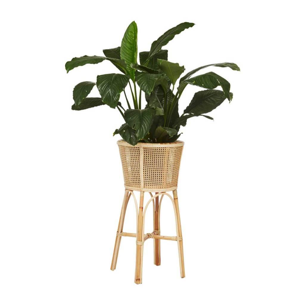 H O M E W E A R S https://www.fentonandfenton.com.au/products/rattan-plant-stand-chicken-eye-tall