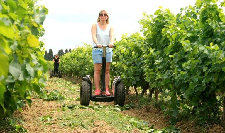 Ride a Segway … - amongst vines and olive trees. A vineyard adventure!