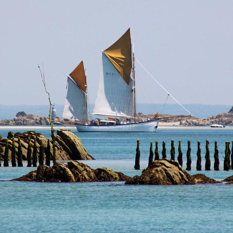 jersey-seafaris-chausey6.jpg