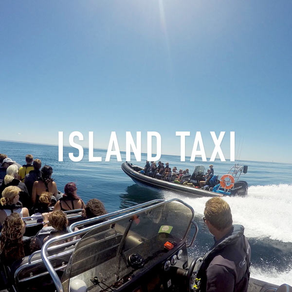 island taxi charter