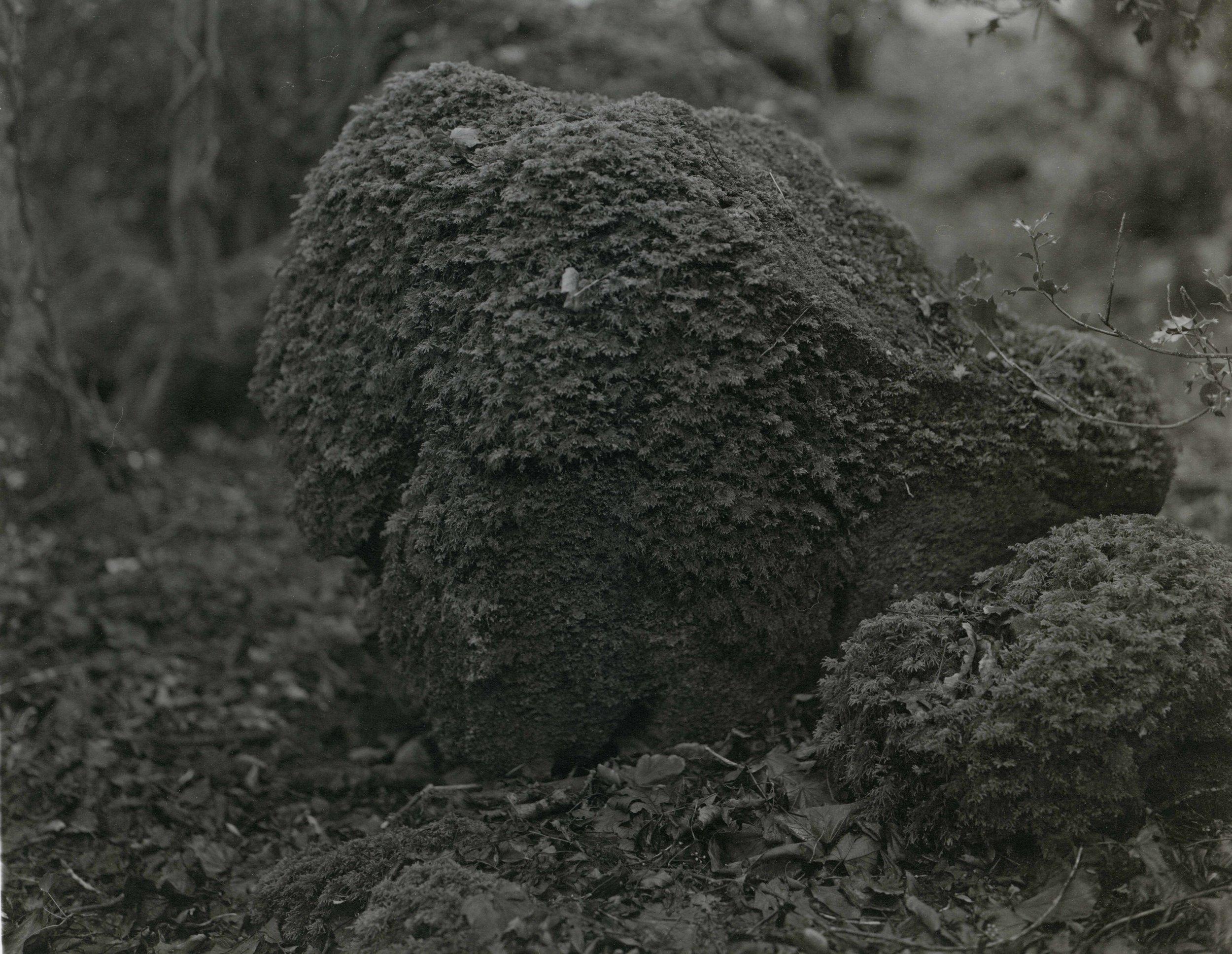 Burren_06.jpg