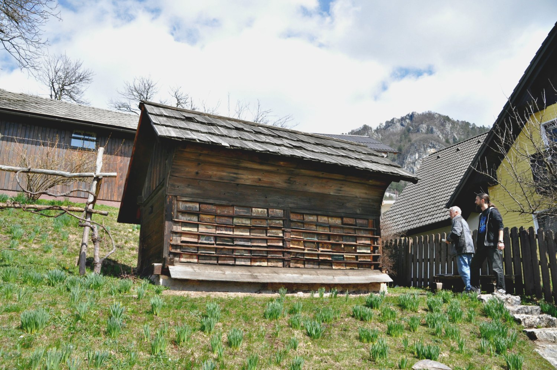Jansa's apiary at Breznica