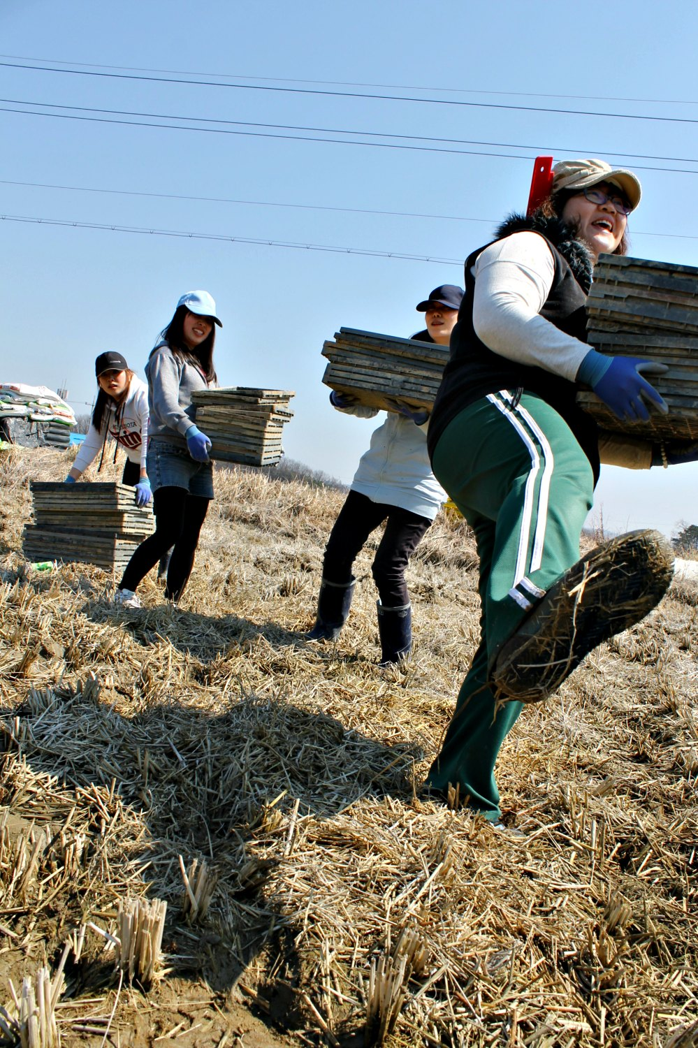 Making contact with other people in the organic movement is one of WWOOF's ideals. Photo:WWOOF