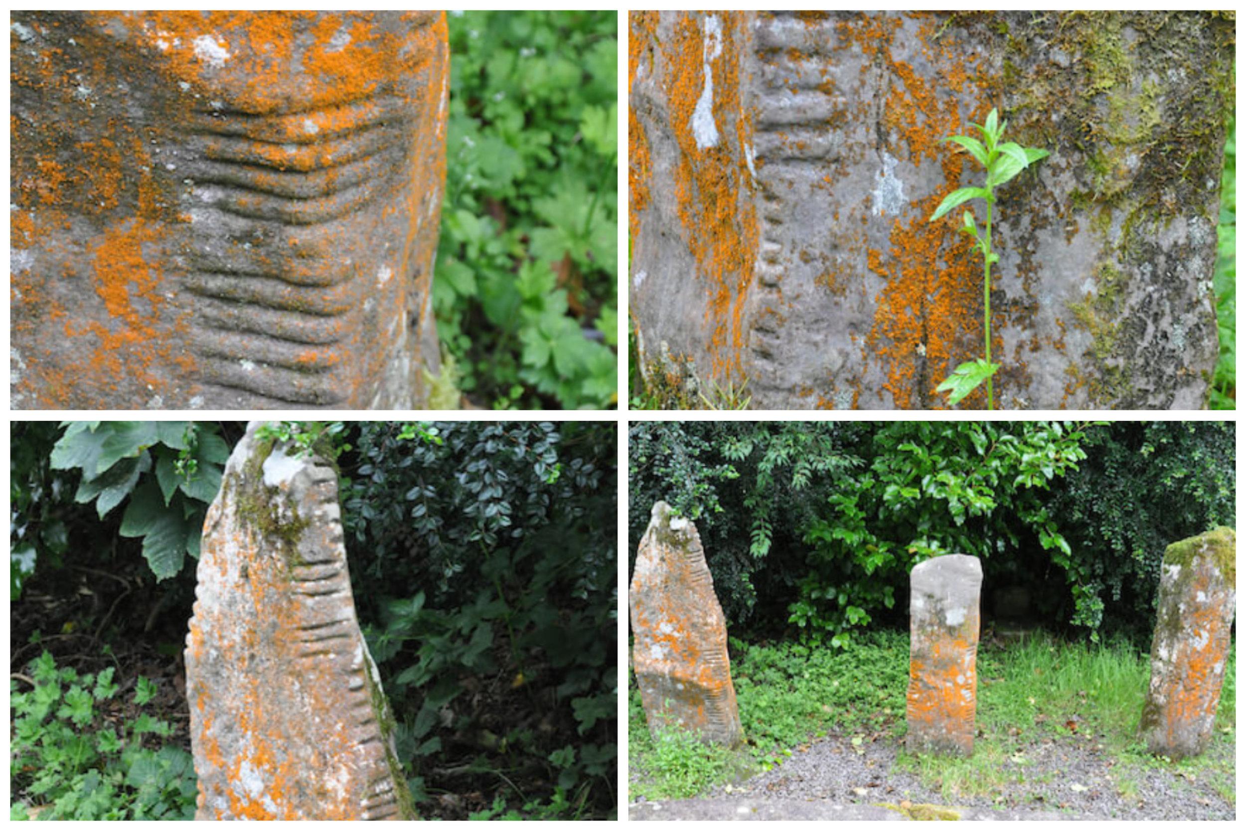 Ogham stones. Photo credit: Meg Pier