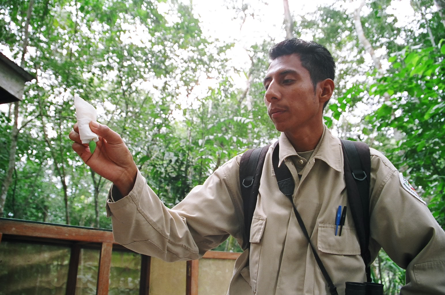 Chaa Creek senior naturalist David Juarez explains the life cycle of the stunning Belizean Blue Butterfly, Photo: Meg Pier