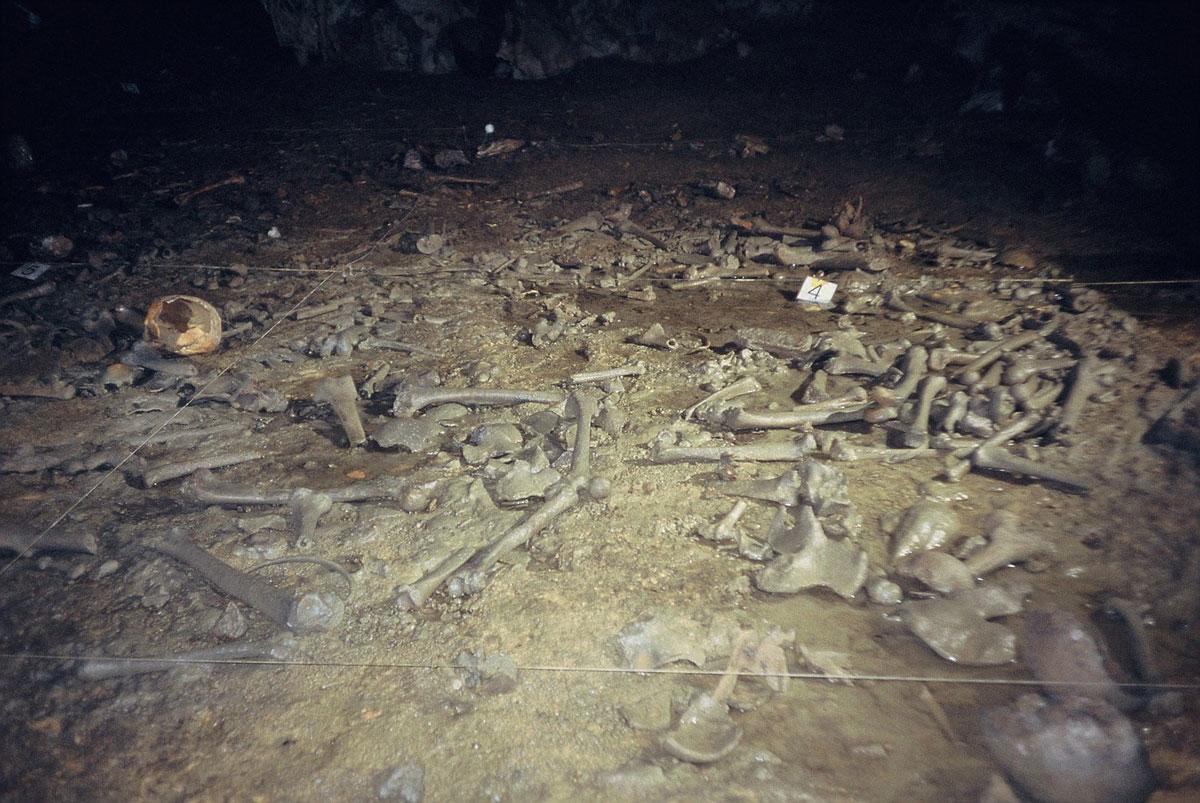 Bones from a Roman necropolis
