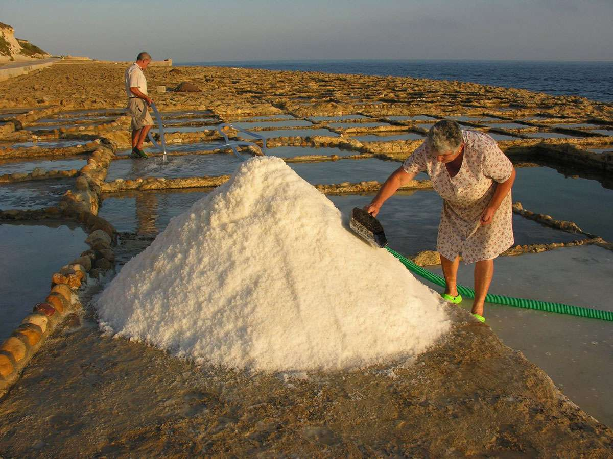 The Cini family at work in the salt pans, credit: Emmanuel Cini, Photo: Meg Pier