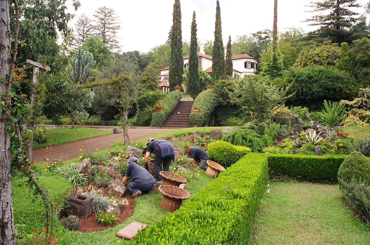 Madeira is home to more than 3,00 species of flowering plants and many formal gardens