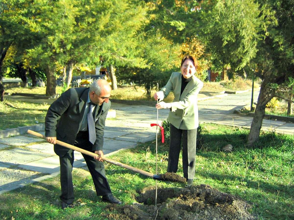 Viva cell tree planting, 04.11.05