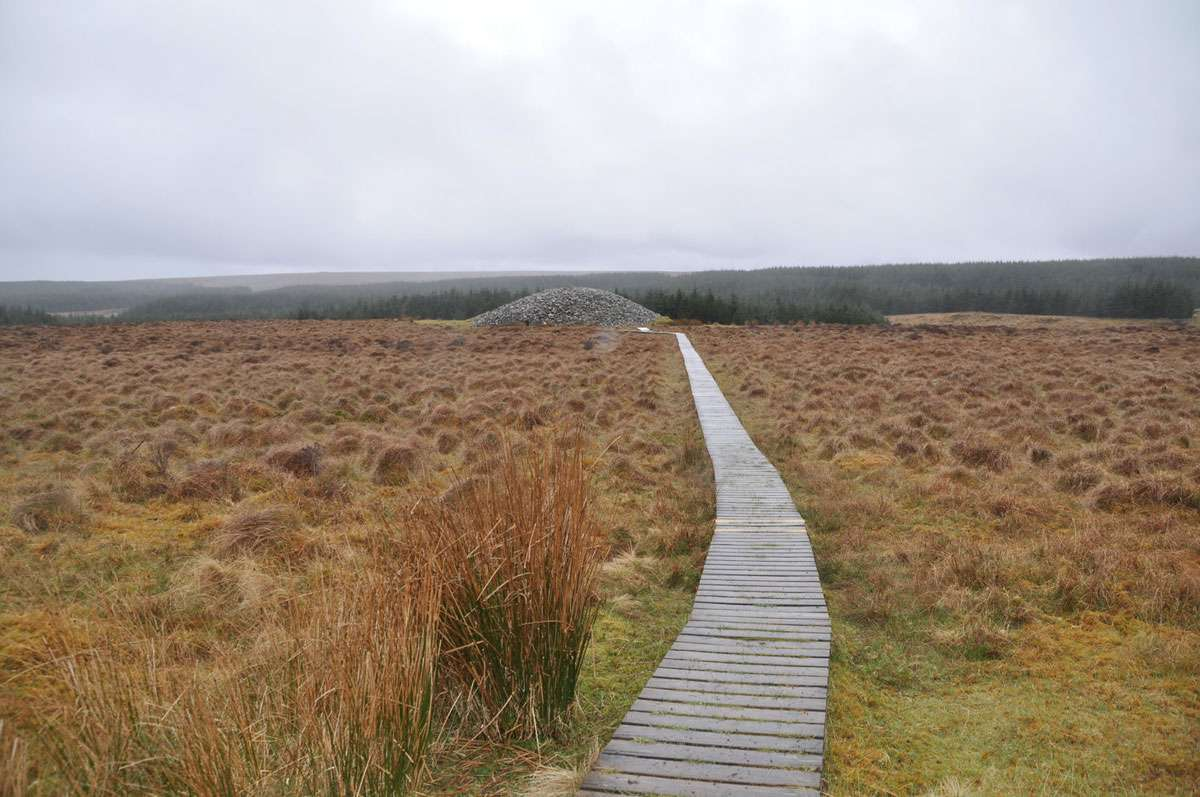 The boardwalk leading over the Flow Country bog to the Grey Cairns of Camster. Photo: Meg Pier