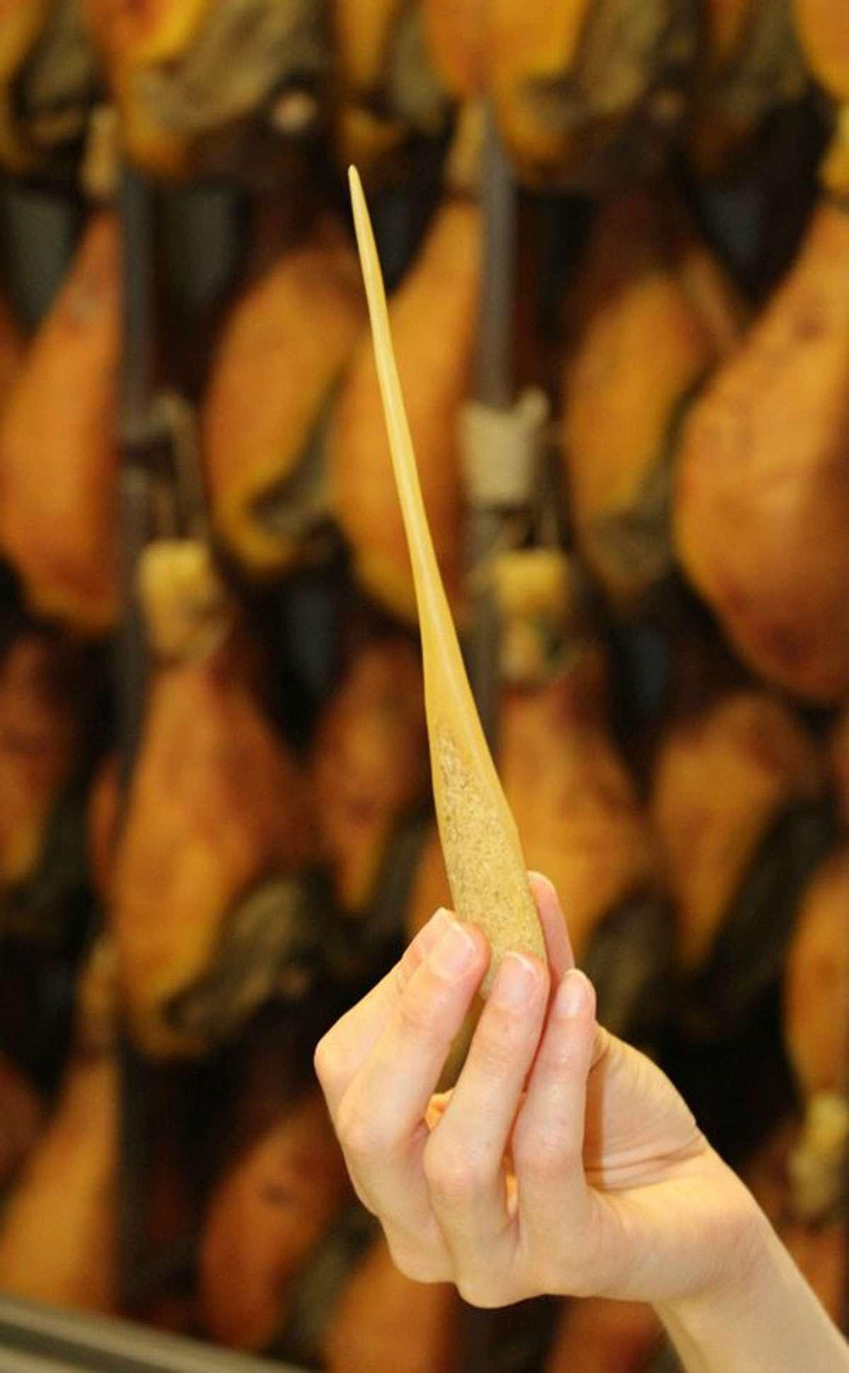 ham-horse-bone-needle