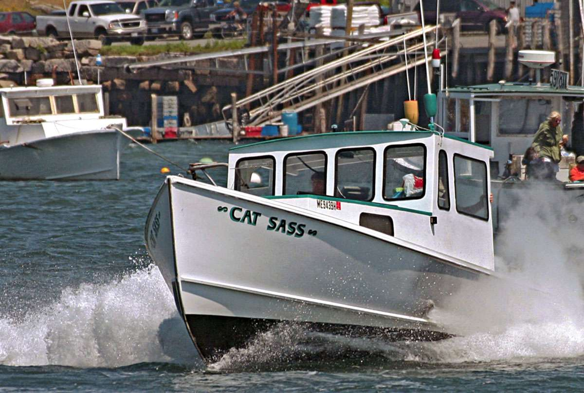 Julie's boat Cat Sass 1. Photo: Sam Murfitt