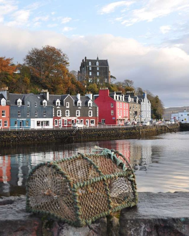 Lobster trap, Tobermory Harbor
