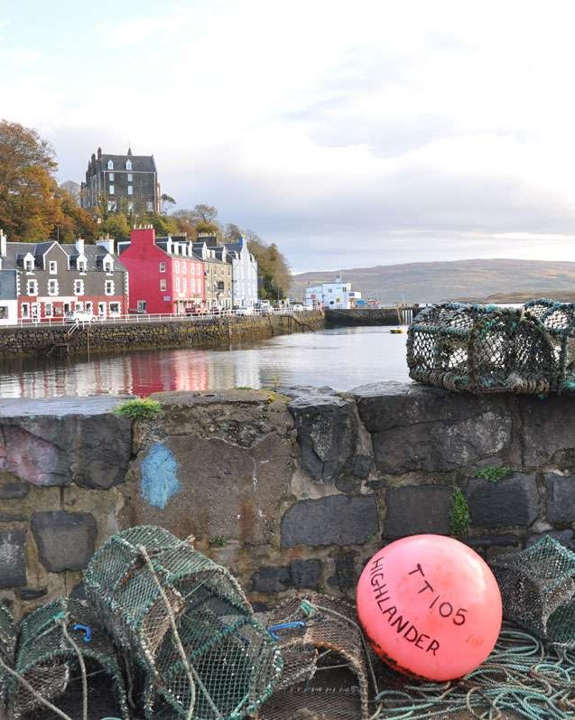 Picturesque Tobermory arbor