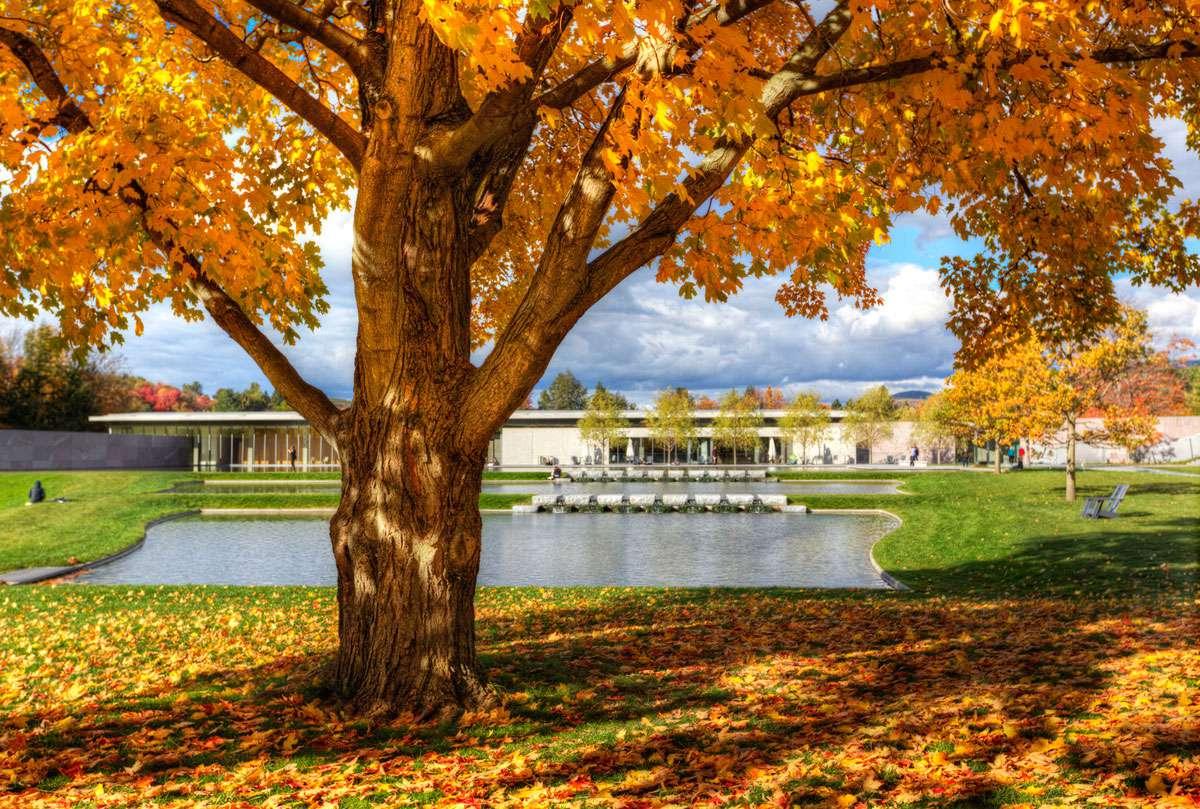 Autumn on the Clark campus. Photo: Clark Art Institute