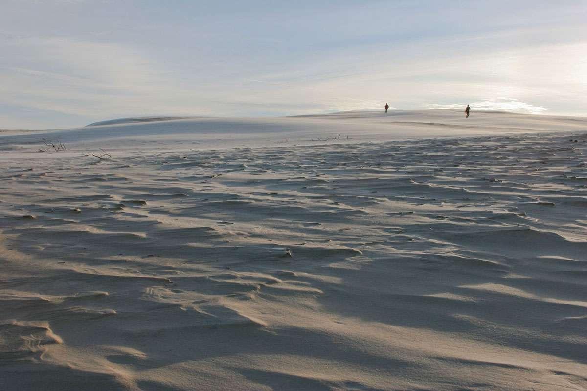 Rabjerg Mile, Denmark's Sahara Photo: Creative Commons, Heje