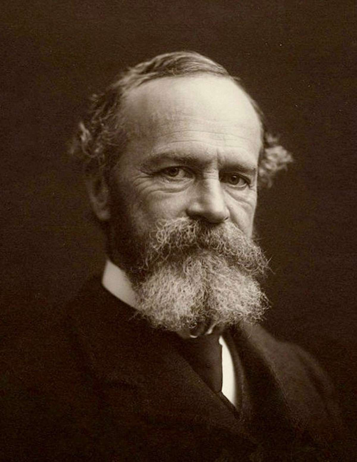 William James. Photo:  Wikimedia Commons