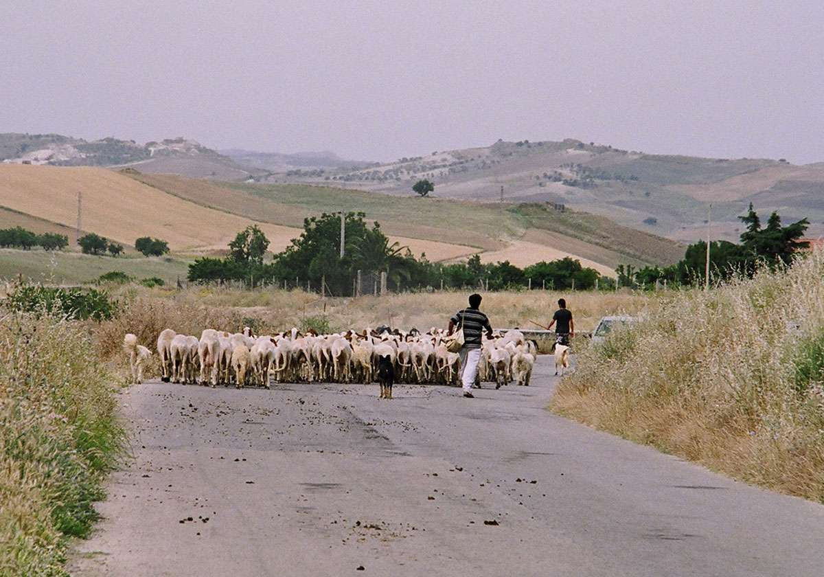 A traffic jam en route to Caltagirone. Photo: Meg Pier