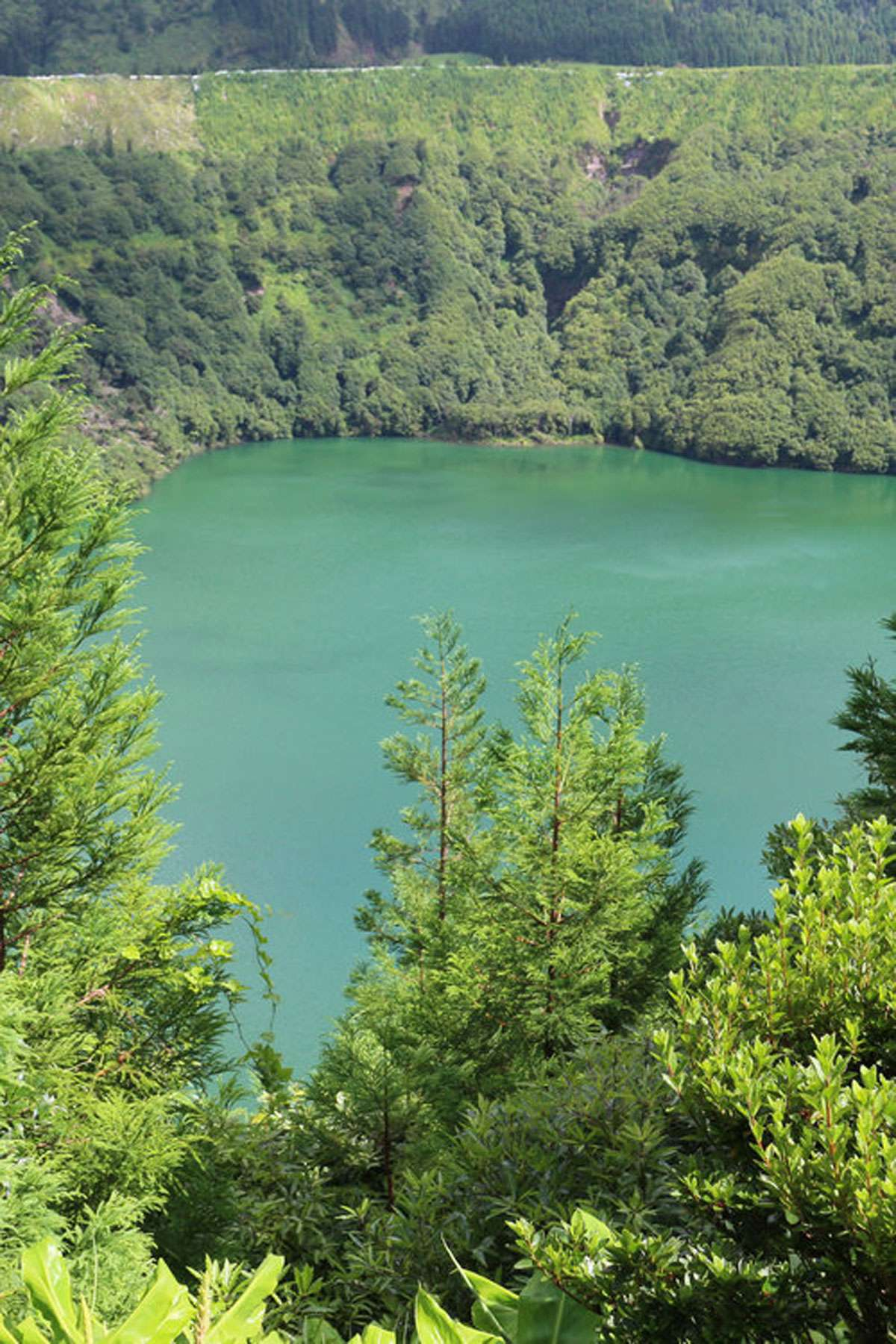 Azores scenery is reminiscent of Hawaii, Iceland and Ireland