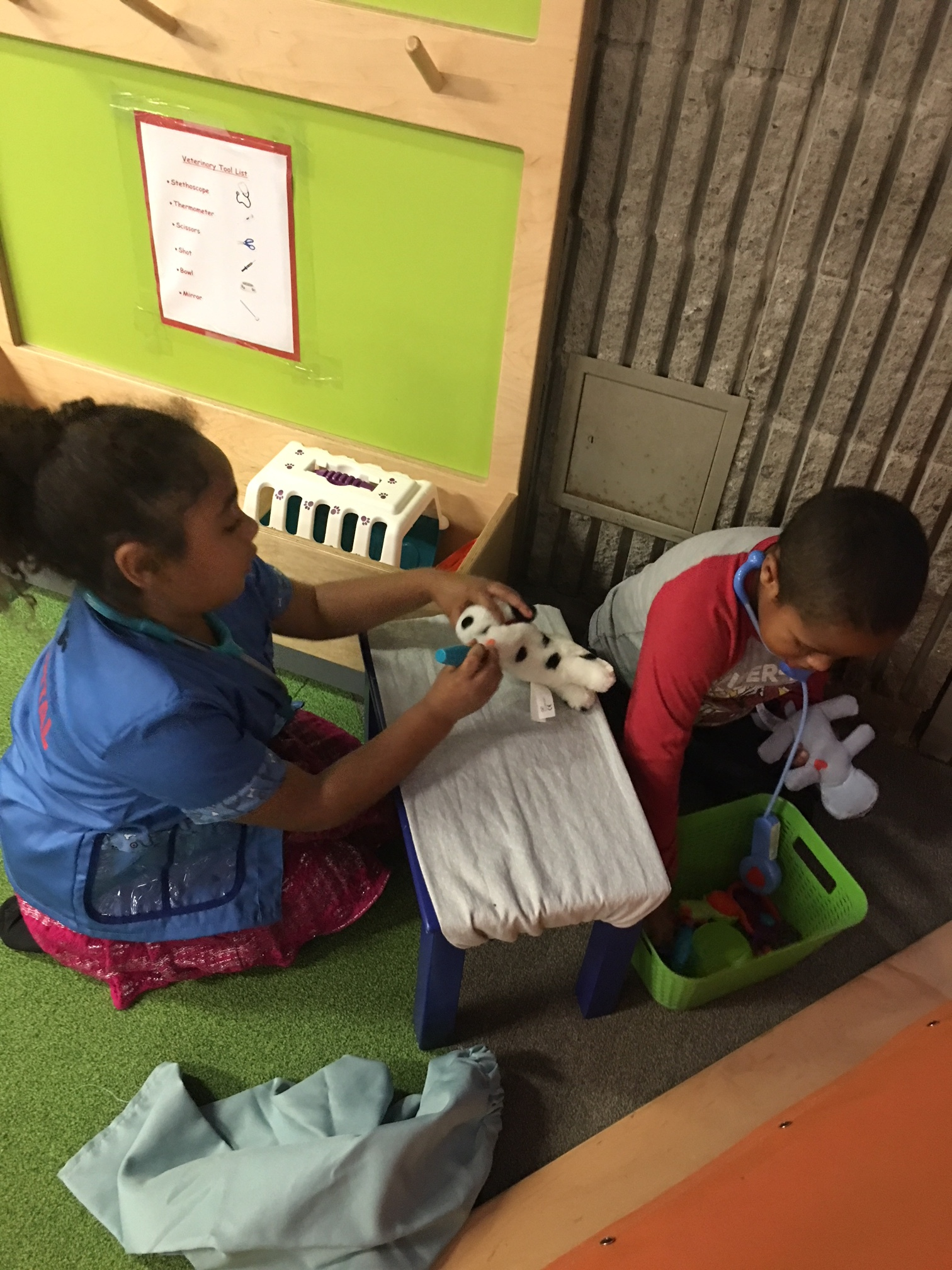 kids playing vet items.JPG