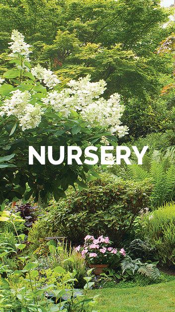 grays-gardens-plant-nursery.png