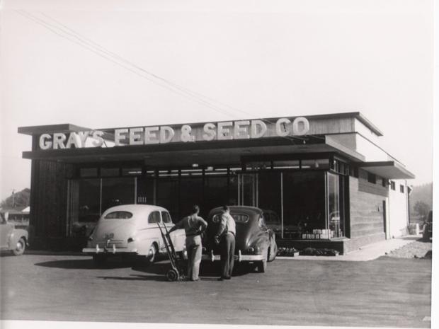 Springfield circa 1950