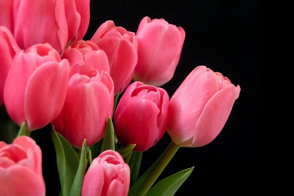 custom-flower-arrangements.jpg