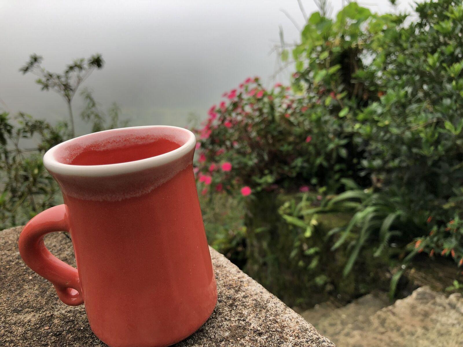 Jamaica - blue mountain coffee2.jpeg