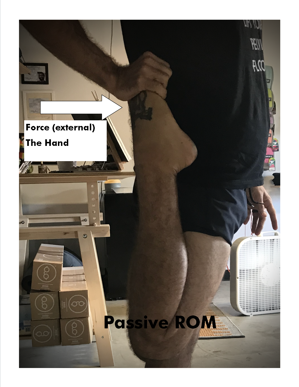 Passive ROM gaze hot yoga