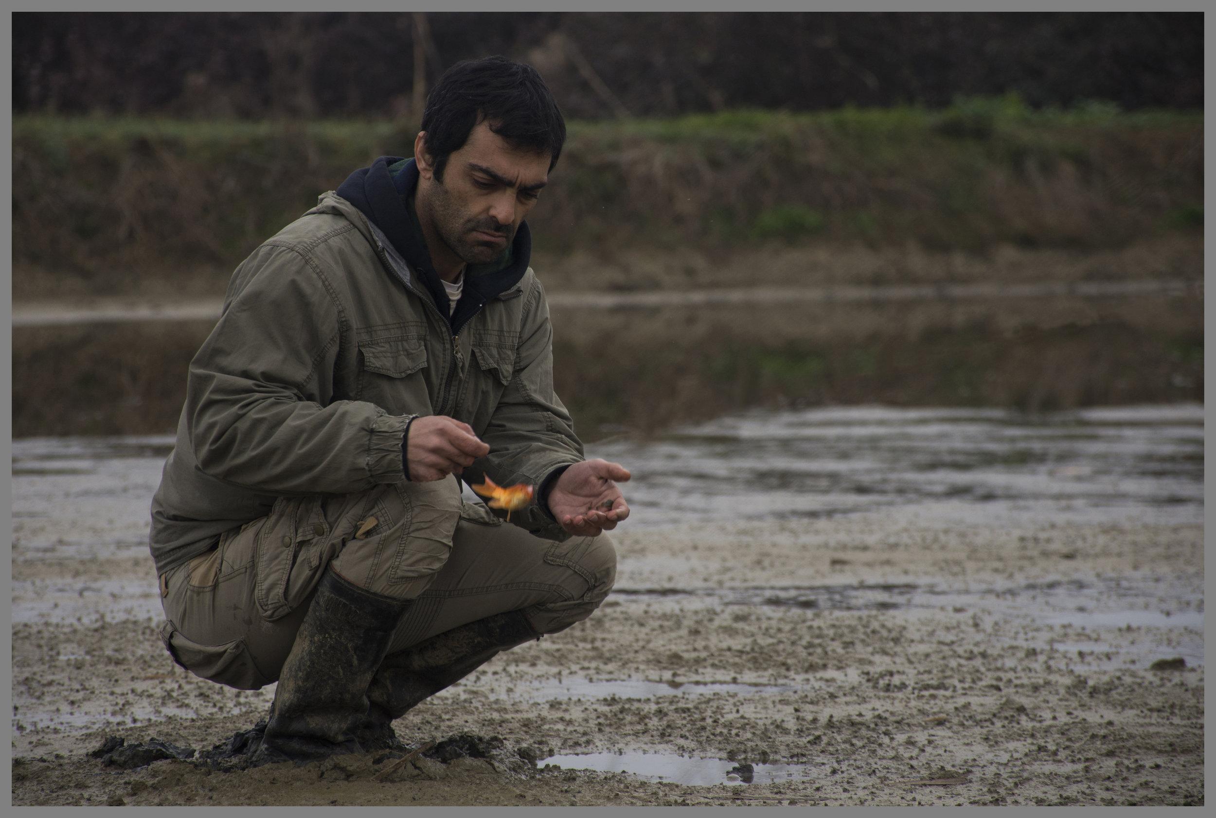 Oppdretter Reza (Reza Akhlaghirad) får en tøff kamp med å holde liv i gullfiskene sine når det mafialignende Selskapet ødelegger for ham.