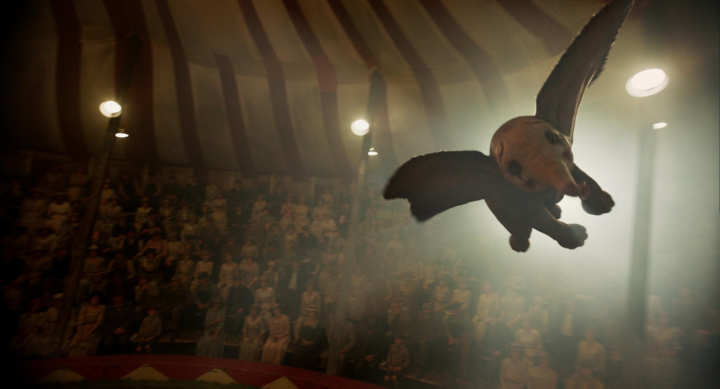 Dumbo, kledd ut som klovn, overrasker alle med å kunne fly.
